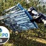 Abbacchiatori per raccolta olive: Campagnola da Garpo