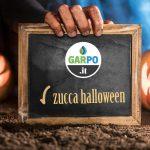Vendita zucche Halloween - San Lorenzo in Campo